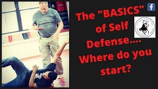The Basics of Self Defense... Understanding the Dynamics of Violence screenshot 4