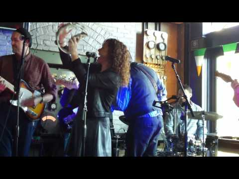 Celtic Cross: Traditional Irish Music, Pier A Harbor House (NYC) 3/17/15