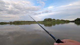ШЕСТЬ видов рыб на спиннинг Рыбалка вышла отличная