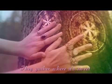 This Embrace ~ Kirtana