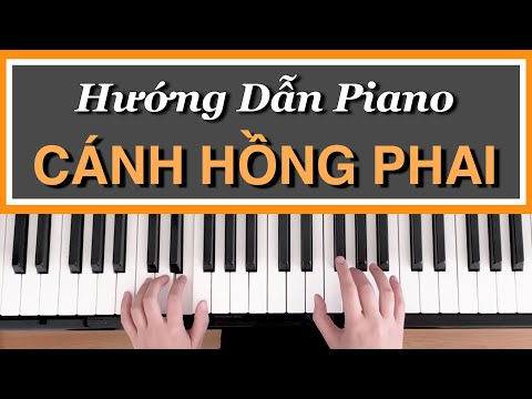 Hng Dn Piano CNH HNG PHAI  m Ht C Bn 3
