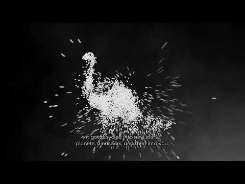 NEMO: Why you're actually the universe too