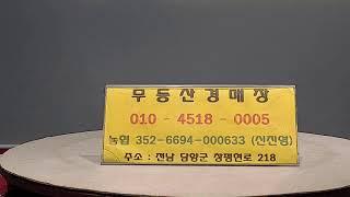 무등산9월23일 수요일 그림경매  5시대륜 7시보물 9…