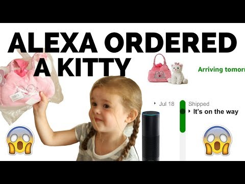 OUR 4-YEAR-OLD ORDERED A KITTY WITH ALEXA...