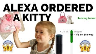 OUR 4-YEAR-OLD ORDERED A KITTY WITH AMAZON ALEXA...