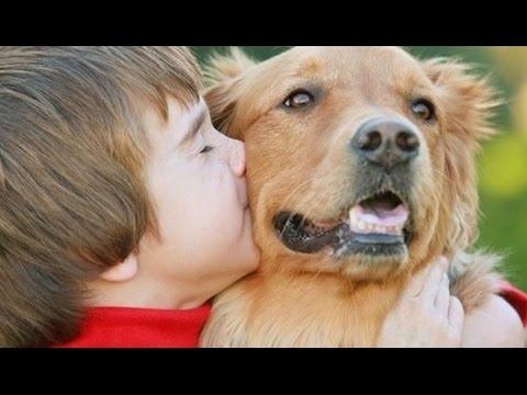Çocuklar İçin EN UYGUN 10 Köpek Cinsi