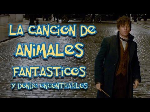 Animales fantásticos y donde encontrarlos trailer (Parodia canción) animales fantásticos cancion