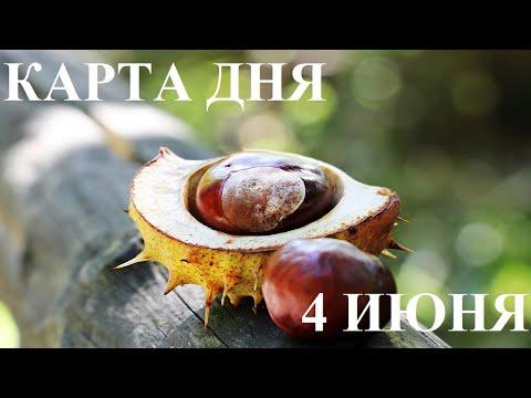 КАРТА ДНЯ 4 ИЮНЯ ТАРО ГОРОСКОП ОТ ЛИС ФИЗАЛИС