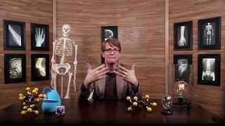 Crash Course A&P: Введение в анатомию и физиологию  №1