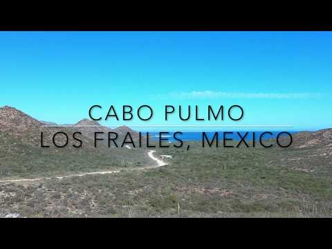 Cabo Pulmo, Los