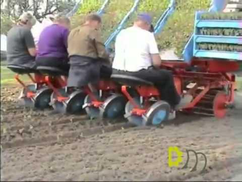 Lauwers HSP (High speed planter) transplanter / plantmachine 4 row - Duijndam Machines
