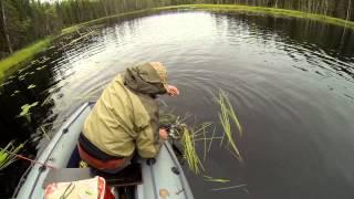 видео рыбалка на озере