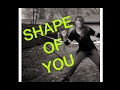 Shape Of You Don T Give A Duck Fitness JVZEL mp3