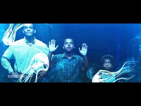 Seven Pounds (2008) - A Box Jellyfish