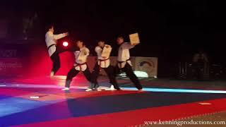 Taekwondo demo show 2017  / korejske bojove sporty