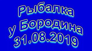 Риболовля у Бородіна 31 08 2019