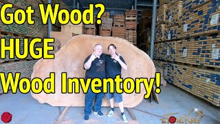 WORLD'S LARGEST WOOD INVENTORY!  AIR DRYING WOOD IN GERMANY!  Framus / Warwick