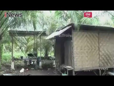 Jauh dari Pemukiman Warga, Kebun Sawit Dijadikan Tempat Persembunyian Teroris - iNews Malam 18/05