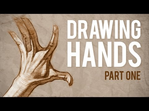 How to Draw HANDS - Muscle Anatomy of the Hand