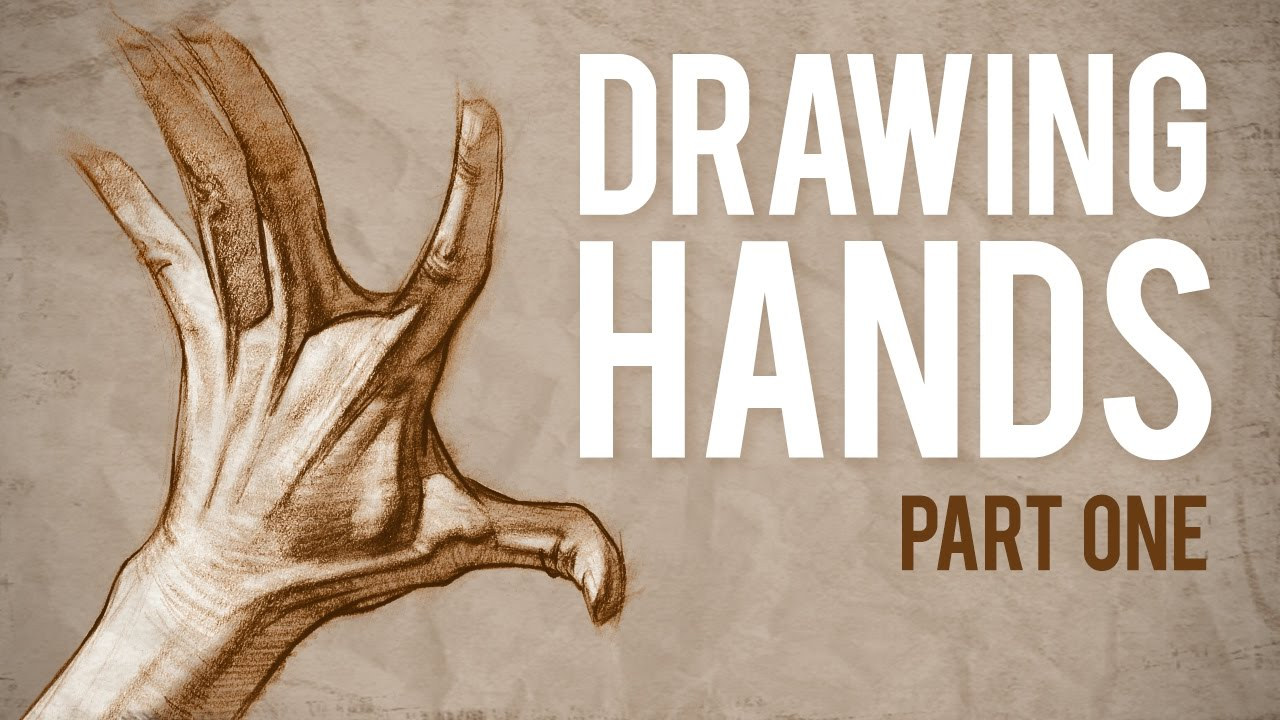 How to Draw HANDS - Muscle Anatomy of the Hand - YouTube