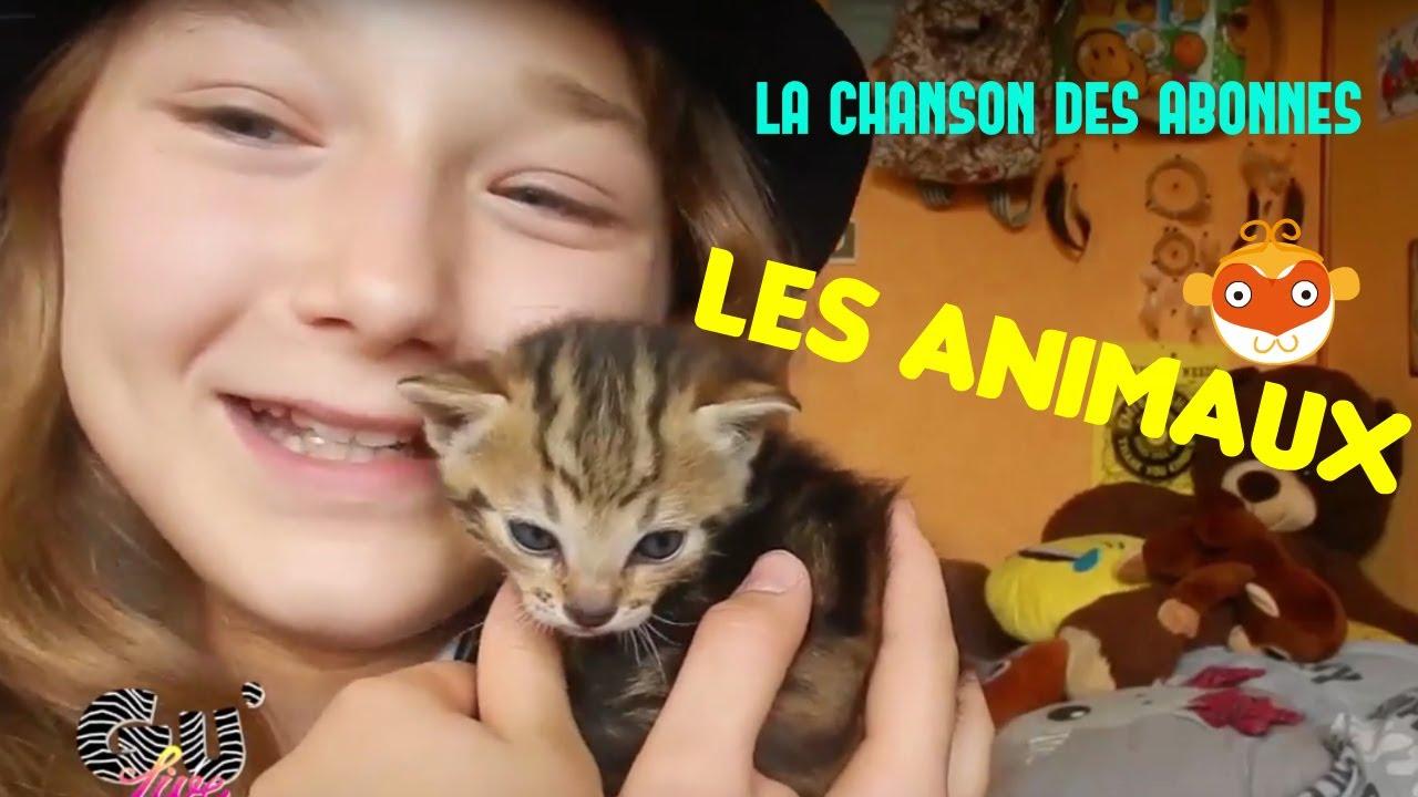 LES ANIMAUX//LA CHANSON DES ABONNES {SATINE} - YouTube
