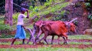 Download Video আমার সোনার বাংলা -জেমস। জেমস এর গান।দেশের গান।jemes bangladesh MP3 3GP MP4