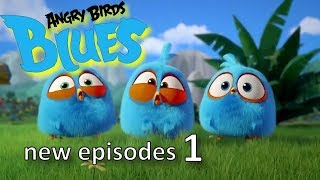Angry Birds Blues | All Episodes Mashup - Special Compilation#1...