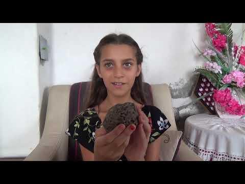 Erdemli Sahilinde Gezerken ''Göktaşı'' Buldu