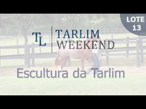 Lote 13 - Escultura da Tarlim (6ºº Leilão Tarlim)