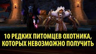 10 Редких Питомцев Охотника, Которых НЕВОЗМОЖНО Получить!