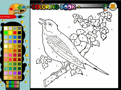 Bluebird Coloring Pages For Kids