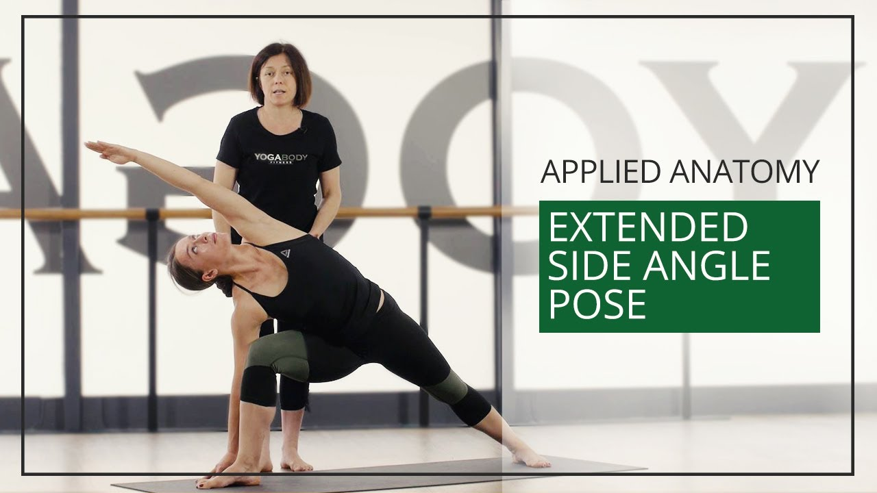 Applied Anatomy For Yoga Teachers Extended Side Angle Pose