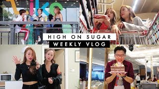 Weekly Vlog | Birthday + FaceTime with a Cat + House Cleaning Day | SO-JU TWINS