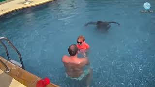 Обучение плаванию детей. До и После. ч2