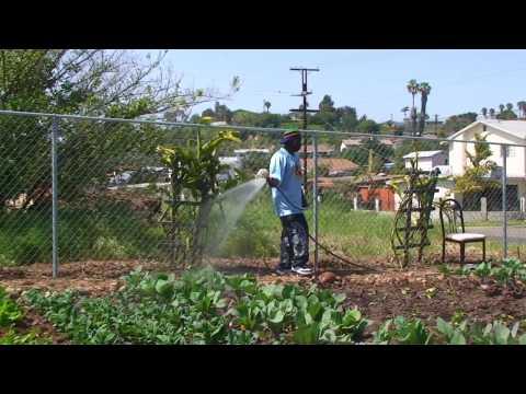 Refugee Entrepreneurial Agriculture Program San Diego