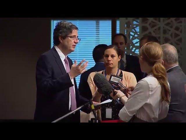 François Delattre (France) on Mali - Press Encounter (16 June 2017)