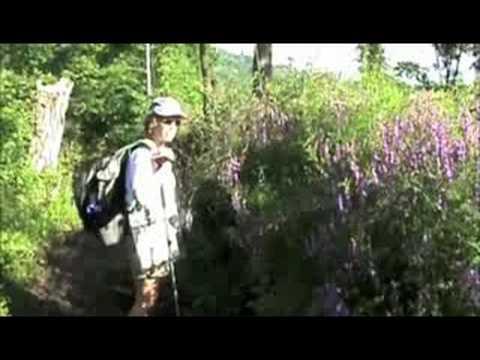 The Robert Louis Stevenson Trail Begins, France