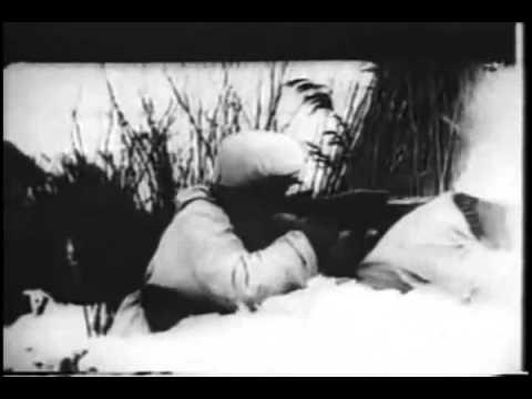 Budapest ostroma 1944 1945 Siege of Budapest