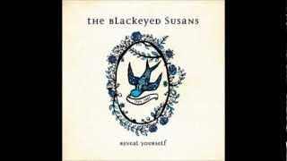 Dive For Your Memory - Blackeyed Susans