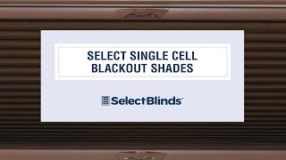 Select Single Cell Blackout Shades from SelectBlinds.com