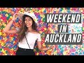 Auckland Things To Do:  Auckland Art Gallery - Yayoi Kusama, Ponsonby Central