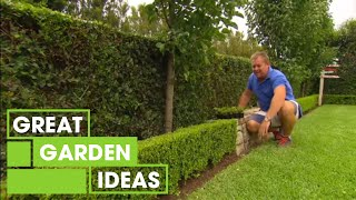 Jason's tips and tricks for the perfect hedging