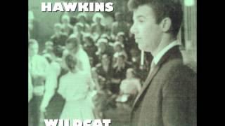 Dale Hawkins - Wildcat Tamer