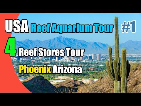 4 Reef Aquarium Stores Tour In Phoenix - Arizona, USA Part1