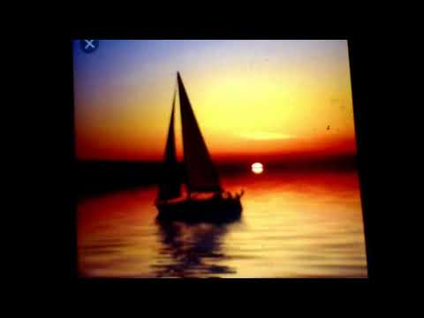 PM MUSIC- Feeling Alive While Smooth Sailing