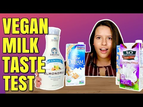 Vegan Milk Review / Non Dairy Milk Taste Test