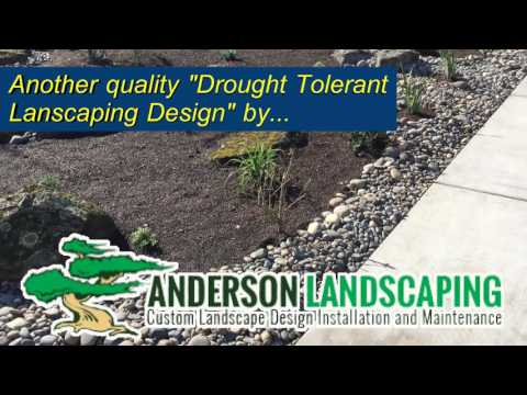Anderson Landscaping ~ The Central Valley's Premier Landscaping Specialist 559.500.3308