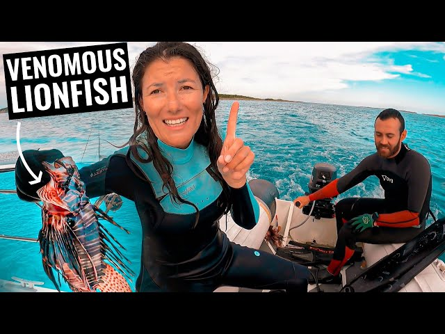 SPEARFISHING CATCH & COOK! Sailing & Fishing Exumas On Sailboat Ep. 66