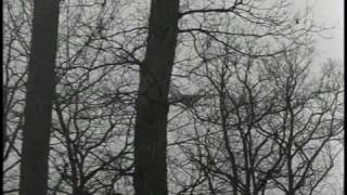 Abschied von gestern (Anita G.) - Alexander Kluge (1966)