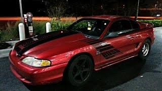 SC 5.0 Mustang vs Mustang GT vs Mustang GT